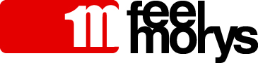 Feelmorys logo